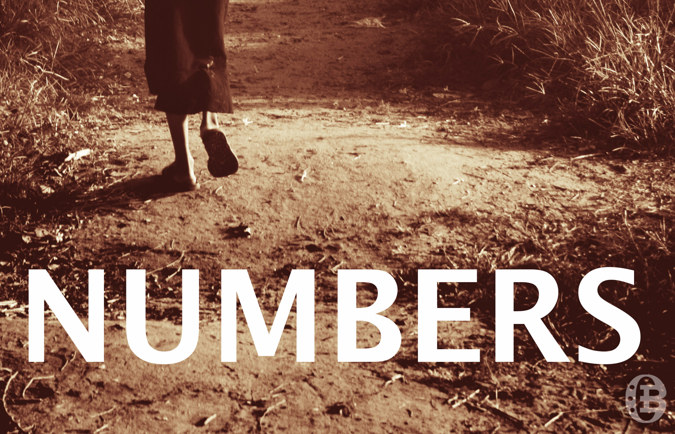 What is Numbers about? An overview and summary of Numbers.
