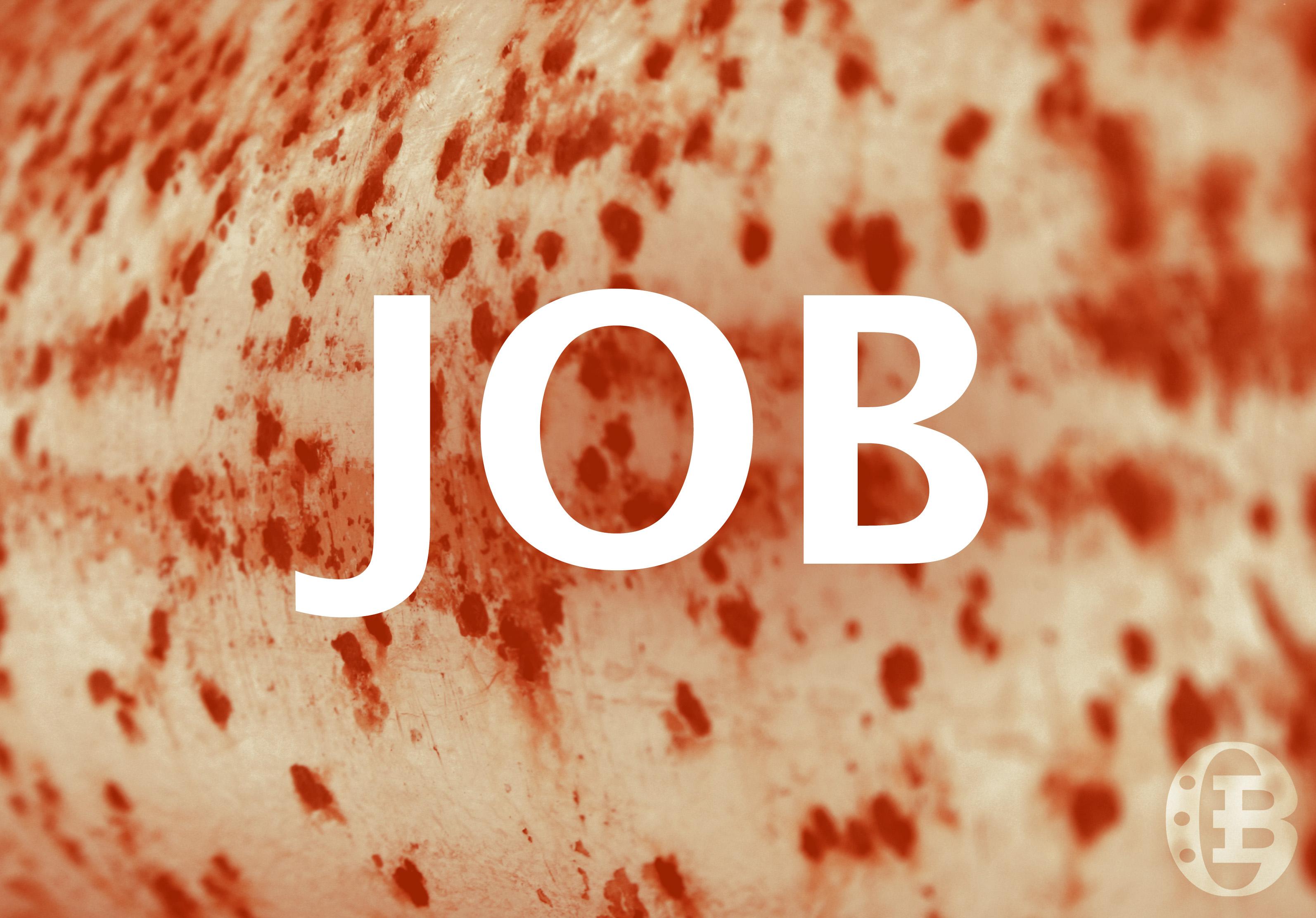 Job Faith Under Fire Overviewbible